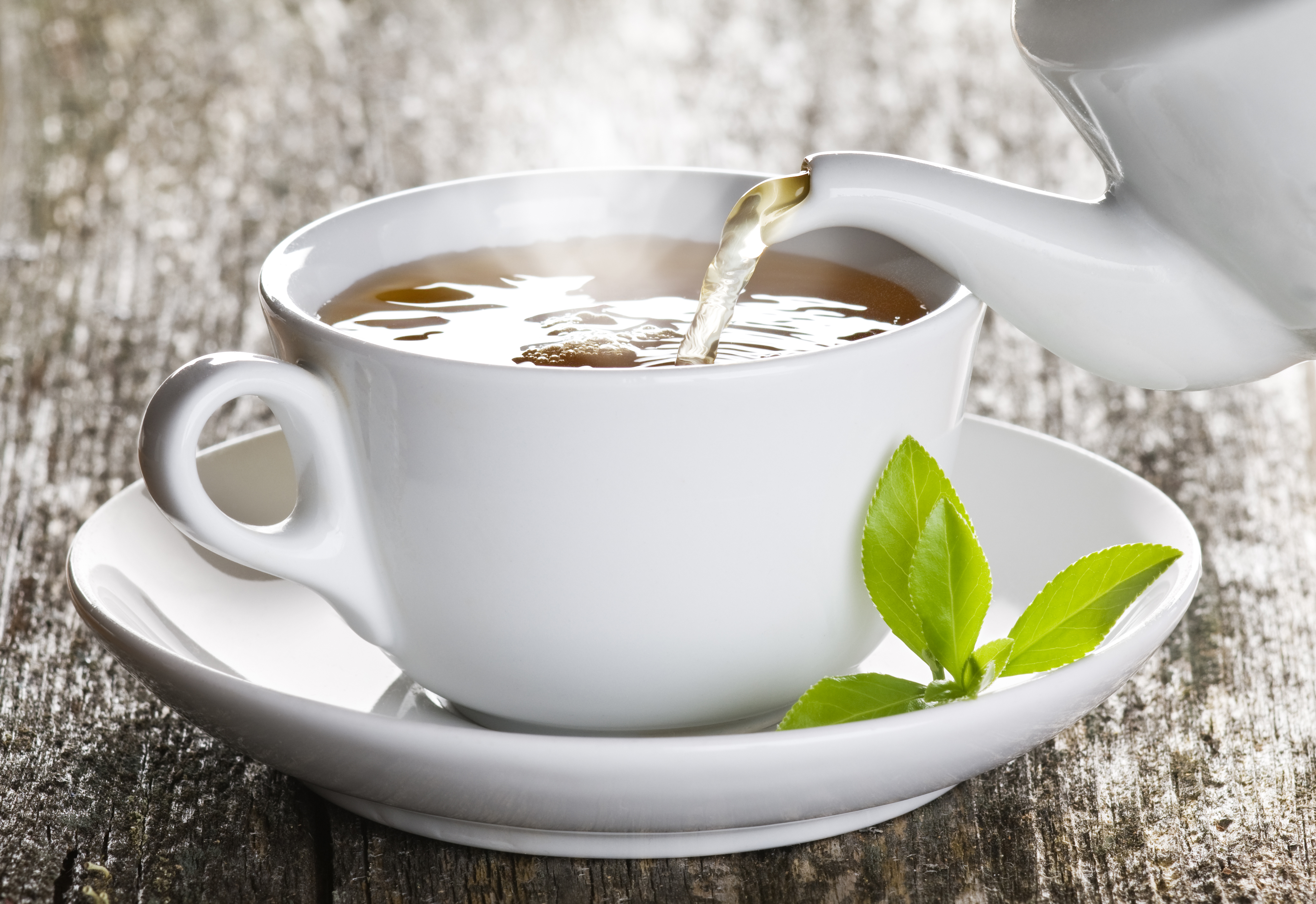 Jakość ma znaczenie, czyli jak wygląda selekcja liści herbacianych?