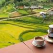 4 egzotyczne sposoby na kawę