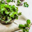 Kalerosse™ – nowe warzywo