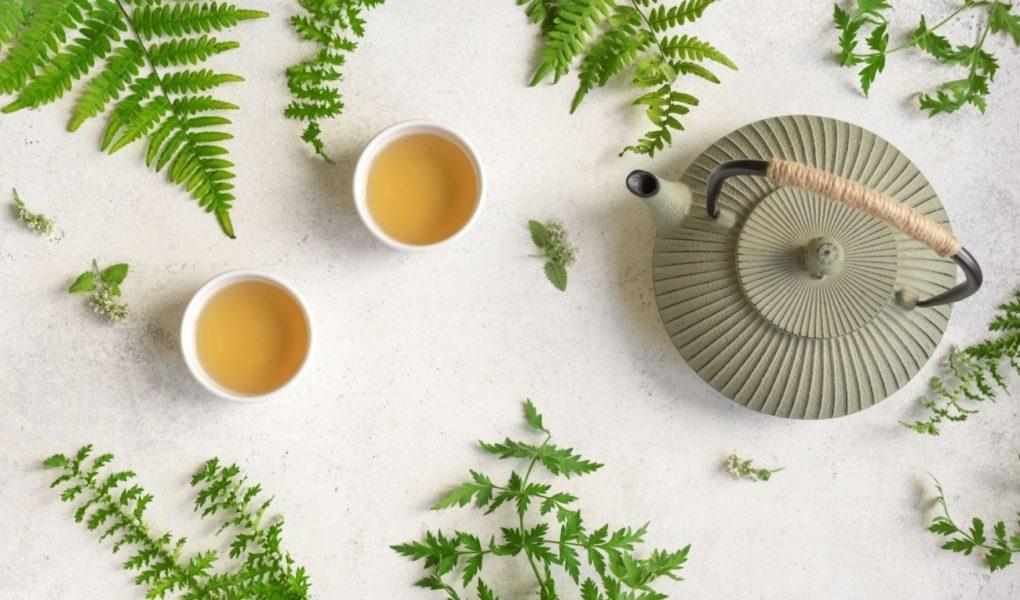 Najsłynniejsze odmiany herbaty zielonej – Różne odcienie zieleni
