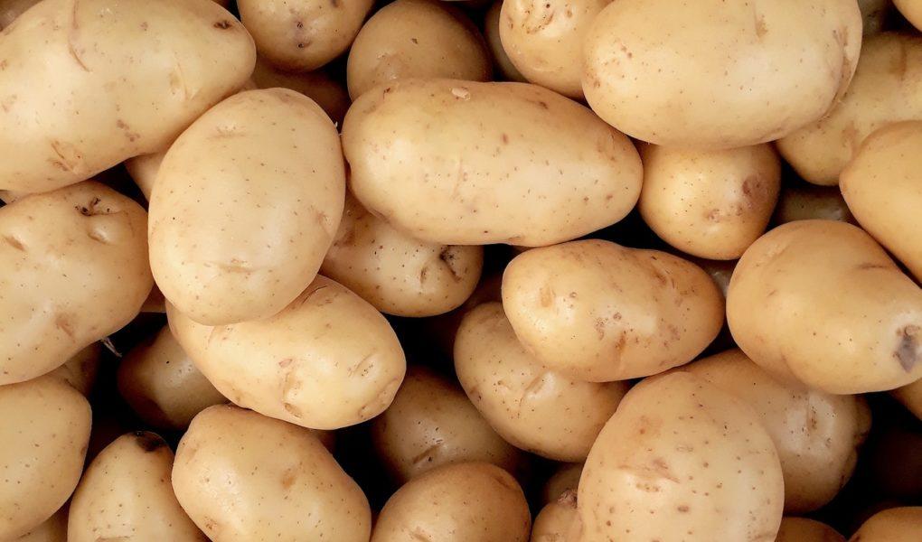 Regionalna kuchnia polska ziemniakami stoi