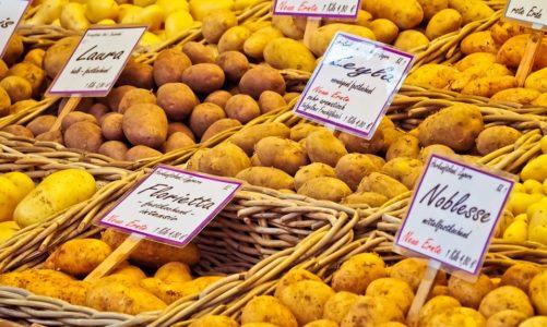 Kolorowe ziemniaki polecają się na stół!
